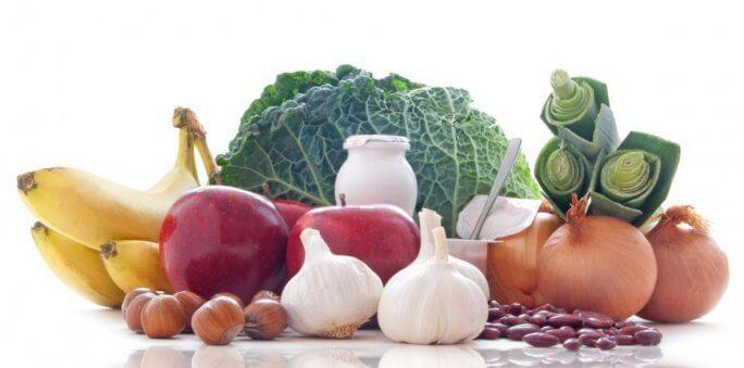 les prébiotiques/probiotiques